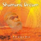 Shamanic Dream Vol. 1 Audio CD