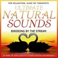 Birdsong by the Stream Audio CD